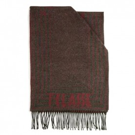Alviero Martini S099/AM47 bordeaux lines scarf